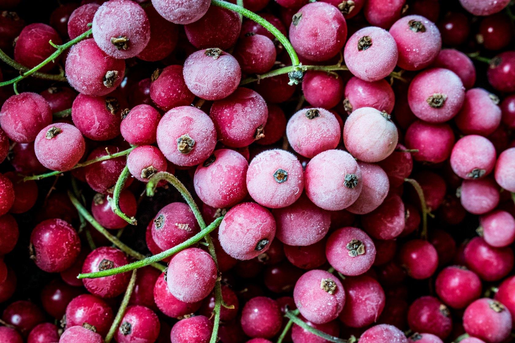 bevroren fruit