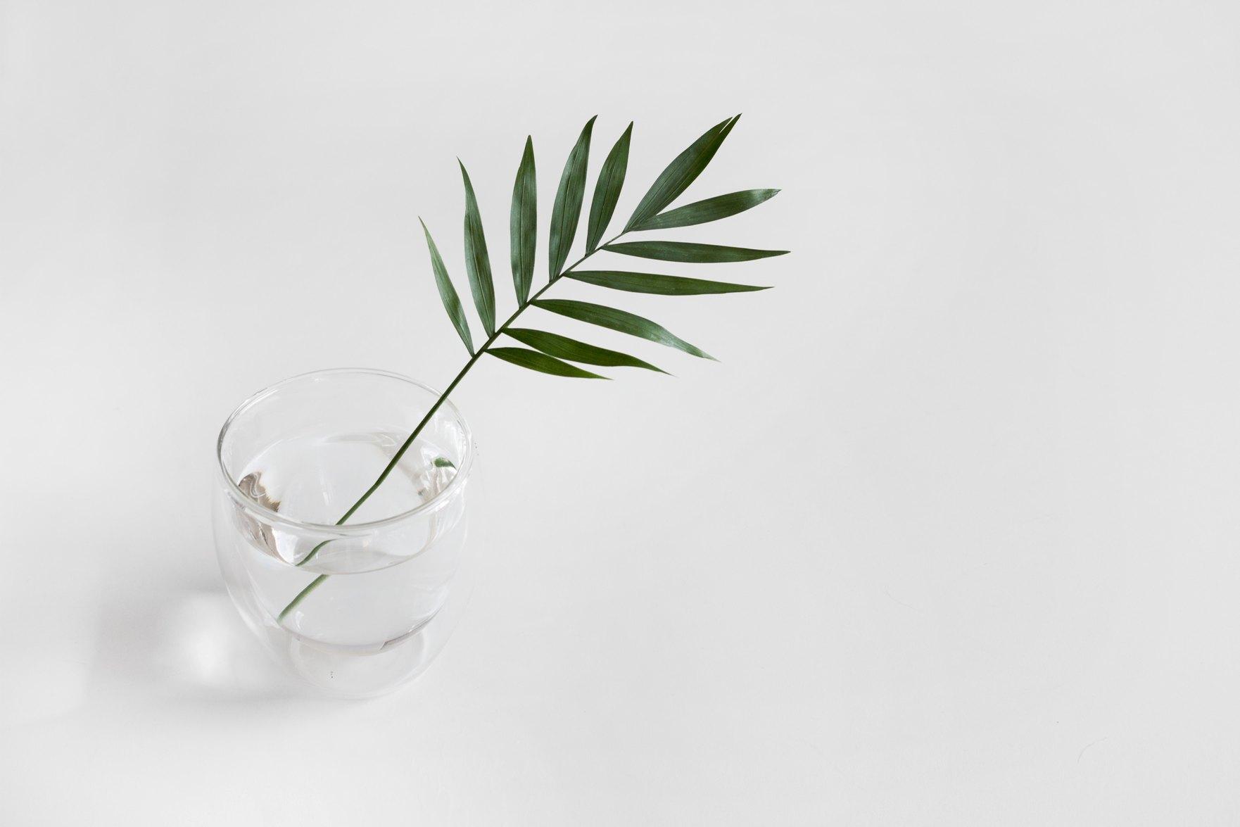 minimalisme